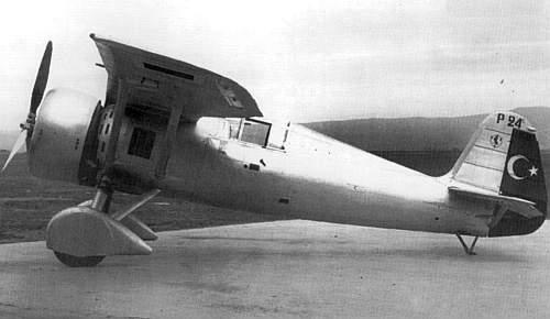 Польский экспортный истребитель-биплан PZL-24 | Красные соколы ...